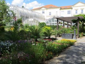Greenhouses as seen from the garden