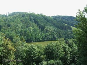 A view into the well preserved natural green space in the Moravice river valley