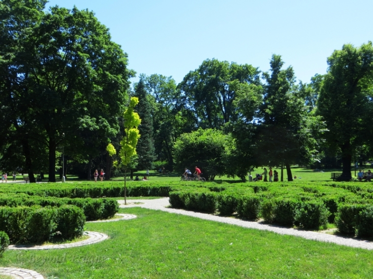 A beautiful summer's day in Brno's Lužánky park.