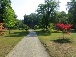 A view of the gardens surrounding the chateau.