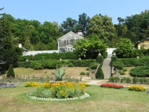 A view to the greenhouse from across the rose garden.